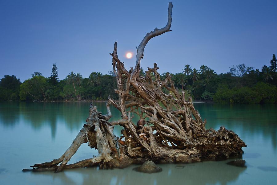 Port Vila lagoon, Vanuatu, moonrise.